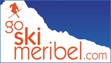 Go Ski Logo