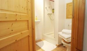 chalet-snowbell-shower-room