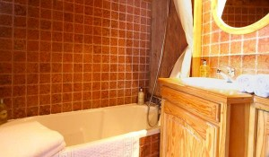 Les-Grands-Sorbiers-bathroom2
