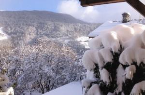 Apt-view-winter