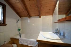 Chalet-Jardin-Sauvage-bathroom