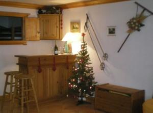 Jardin-d-Hiver-3-bedrooms-lounge2