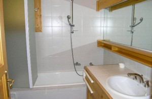 tetras-bathroom2
